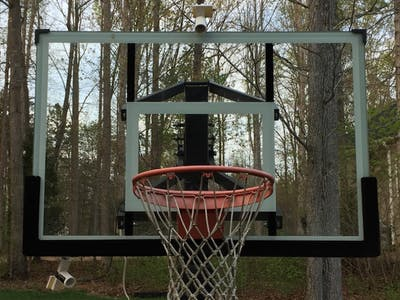 Hoops in the forest picture